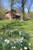 Restored farmhouse. Beautifully restored turn of the century farmhouse in Indiana Royalty Free Stock Photography