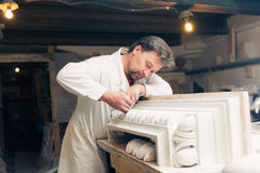 Restorer working with gypsum model Stock Images