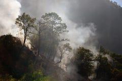 Restos ardentes nas inclinações das montanhas nas selvas de Fotos de Stock