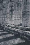 Restos arqueológicos de Paestum Salerno Italia Foto de archivo libre de regalías
