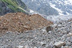 Restos da moraine no Cáucaso Fotos de Stock