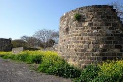 Restos de la pared de la fortaleza Imágenes de archivo libres de regalías