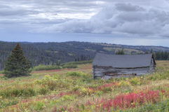 Restos de una granja del Alaskan del ol Imagen de archivo libre de regalías