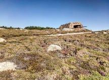 Restos del cañón de la guerra en la costa foto de archivo