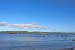 Restos del embarcadero viejo en Sandy Point Beach Maine Imágenes de archivo libres de regalías