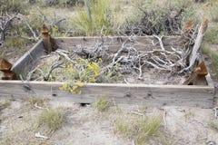 Restos na sepultura não marcado no cemitério de Bodie fotografia de stock