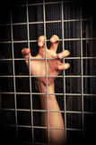 Restraint of liberty. Hand holding the grid. restraint of liberty conceptual photo Royalty Free Stock Photography