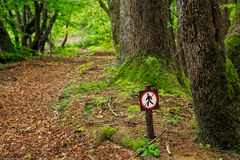 Restricted area sign in forest Royalty Free Stock Photos