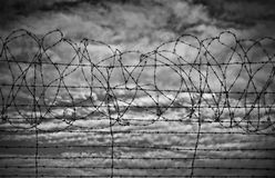 Restrictions barbed wire black and white Royalty Free Stock Image