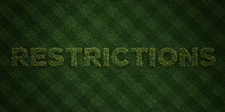 RESTRICTIONS - fresh Grass letters with flowers and dandelions - 3D rendered royalty free stock image Royalty Free Stock Photos