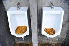 restroom stock afbeelding