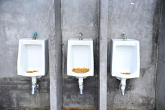 restroom Στοκ Εικόνες