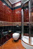 Restroom interior. Interior of new colored restroom with shower Royalty Free Stock Image