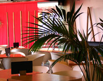 Resturant tables. Empty with blank black menus with a palm in the foreground Royalty Free Stock Images