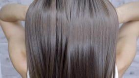 Resultado después de la laminación y del pelo que se enderezan en un salón de belleza para una muchacha con el pelo marrón Concep metrajes
