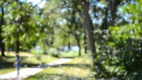 Resuma la pista de senderismo borrosa de los fondos en el parque frondoso verde almacen de video