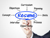Resume. Concept sketched on screen royalty free stock images
