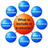 Resume information. What information to include in a resume Stock Photography