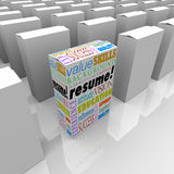 Resume Many Boxes Best One Unique Candidate Standing Out. The word Resume and job or interview related terms such as skills, education, background, experience Stock Photo