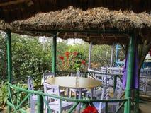 Resurant de bambou Photo stock