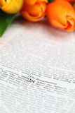 Resurrection. Open Bible with selective focus on the text in Matthew 28 about Jesus' resurrection. Shallow DOF Royalty Free Stock Photos