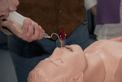 Resuscitation demonstration Stock Photography