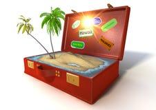resväska för ferie 3d Arkivbild