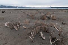 Resztki drewniane wielorybie nafciane baryłki, wielorybniki Trzymać na dystans, łudzenie wyspa, Antarctica obrazy royalty free