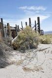 Resztki stary nieociosany bydło rancho Zdjęcie Stock