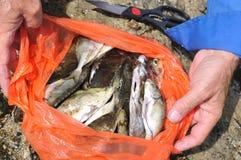 Retén del pescador foto de archivo libre de regalías