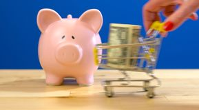 Retail savings shopping concept with miniature shopping cart and piggy bank stock photography