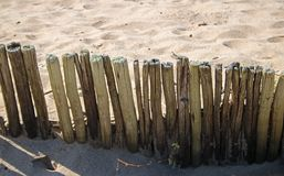 RETAINING PEGS IN THE SAND Royalty Free Stock Photos