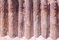 Retaining piles. Protecting the soil from fraying Royalty Free Stock Photography