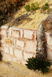 Retaining wall with an overhanging cactus Royalty Free Stock Photography