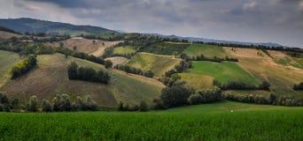 Retalhos dos campos do rolamento que começam o verde Fotos de Stock Royalty Free