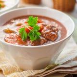 Retarde o guisado de carne cozinhado com vegetais Fotografia de Stock