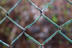 rete Fotografia Stock Libera da Diritti
