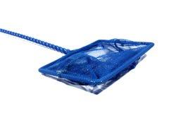 Rete blu dei pesci Immagini Stock