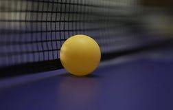 Rete blu della tavola di ping-pong Immagini Stock