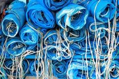 Rete blu per il pesce del fermo Immagini Stock Libere da Diritti