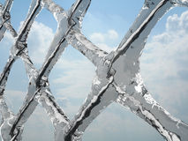 Rete congelata Immagine Stock