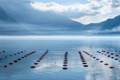 Rete da pesca con i galleggianti Immagini Stock