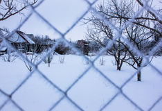 Rete del metallo coperta dai cristalli di ghiaccio Fotografie Stock Libere da Diritti