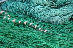 Rete del pesce Immagine Stock Libera da Diritti