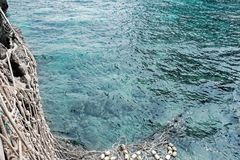 Rete del pesce in oceano blu Fotografia Stock