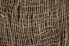 Rete della corda Fotografie Stock