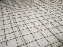 Rete della gabbia di ferro Fotografia Stock