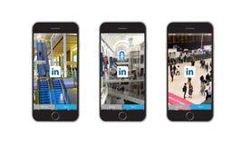 Rete di Linkedin Immagini Stock