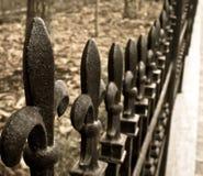 Rete fissa del ferro immagini stock libere da diritti