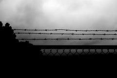 Rete fissa 3 del filo Fotografie Stock Libere da Diritti